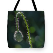Delicately Waiting Tote Bag