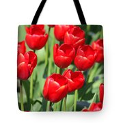 Delicious Tulips Tote Bag