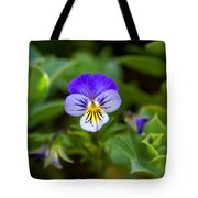 Delightful Colors Tote Bag