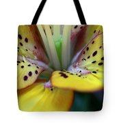 Delightful Wonder Tote Bag