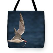 Delivery  4398 Tote Bag
