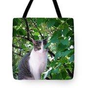 Demure Kitty Tote Bag