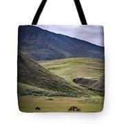 Denali Grizzly Family Tote Bag