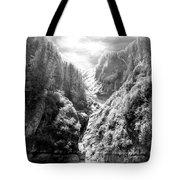 Denali National Park 2 Tote Bag