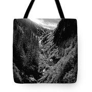 Denali National Park 3 Tote Bag