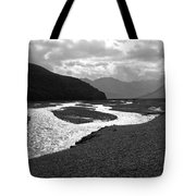 Denali National Park 5 Tote Bag