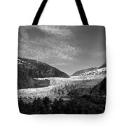 Denali National Park 6 Tote Bag
