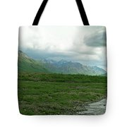 Denali National Park Landscape 2 Tote Bag