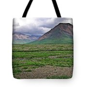 Denali National Park Landscape 3 Tote Bag