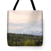 Denali Produces Its Own Weather Tote Bag