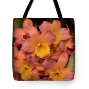Dendrobium Oriental Smile Tote Bag