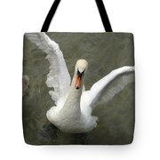 Denmark, Copenhagen Swan Flaps Her Wing Tote Bag