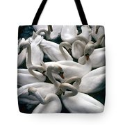 Denmark Swans Gathered On A Lake Tote Bag