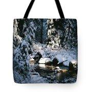 Denny Creek Tote Bag