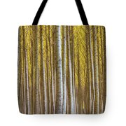 Dense Forest Of Poplar Trees In Boardman Oregon During Fall Tote Bag