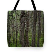 Dependence Can Hurt Tote Bag