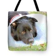 Depressed Dog Tote Bag