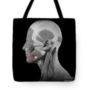 Depressor Anguli Oris Tote Bag