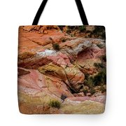 Depth Of The Canyon Tote Bag