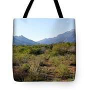Desert And Mountains In Mexico Cabo Pulmo Tote Bag