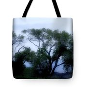 Desert At Night Tote Bag