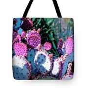 Desert Blush Tote Bag