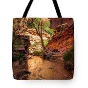 Desert Canyon Paradise - Coyote Gulch - Utah Tote Bag