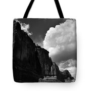 Desert Colossus Tote Bag