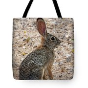 Desert Cottontail 1822 Tote Bag