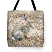 Desert Cottontail Tote Bag