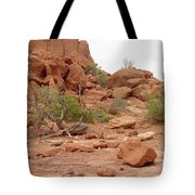 Desert Elements 5 Tote Bag