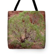 Desert Elements 6 Tote Bag