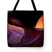 Desert Eye Tote Bag