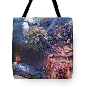 Desert Floor Tote Bag