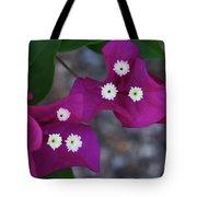 Desert Flower 2 Tote Bag