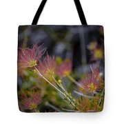 Desert Flower Tote Bag