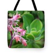 Desert House Blooming Succulent Tote Bag