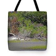 Desert Isle Tote Bag
