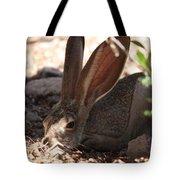 Desert Jackrabbit Tote Bag