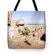 Desert Lake Tote Bag