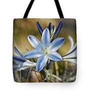 Desert Lily Tote Bag