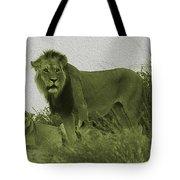 Desert Lions Tote Bag