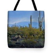 Desert Mule Tote Bag
