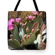 Desert Plants - Fuchsia Cactus Flowers Tote Bag