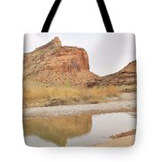 Desert Reflections 2 Tote Bag