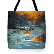 Desert Reflections Tote Bag