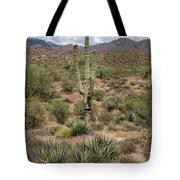 Desert Renewel Tote Bag