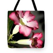 Desert Rose 7 Tote Bag