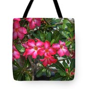 Desert Rose Or Chuanchom Dthb2107 Tote Bag