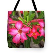 Desert Rose Or Chuanchom Dthb2108 Tote Bag